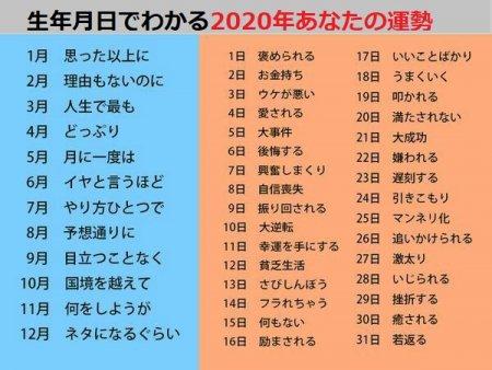 kogusoku-2020-01-01_06-19-10_106502